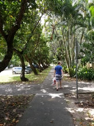 Tropical walks
